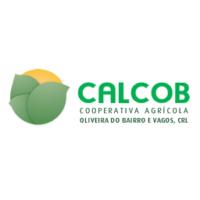 calcob2_quadrado