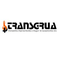 transgrua2_quadrado