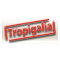 tropigalia_quadrado