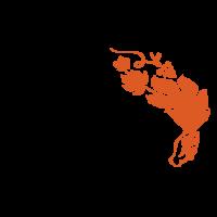 Logótipo da empresa Grape Ideas do Grupo Sogrape