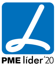 2PME_Lider_2020_2D_cores